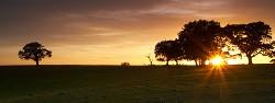 Backley Plain