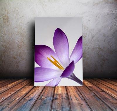 large flower print on canvas