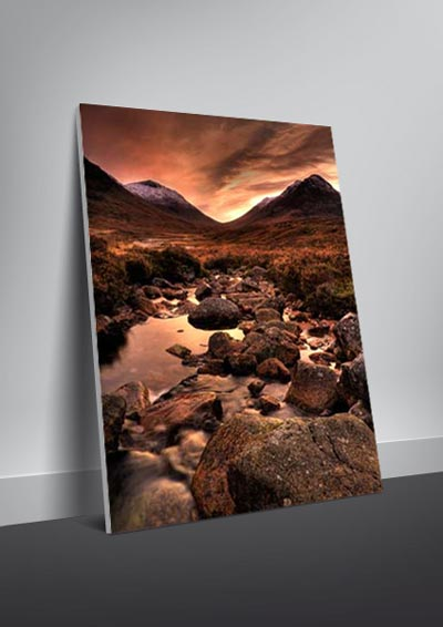 large gallery canvas print