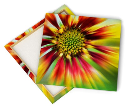 Canvas print frame with flower