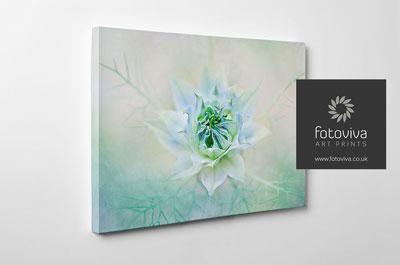 Modern floral art on canvas