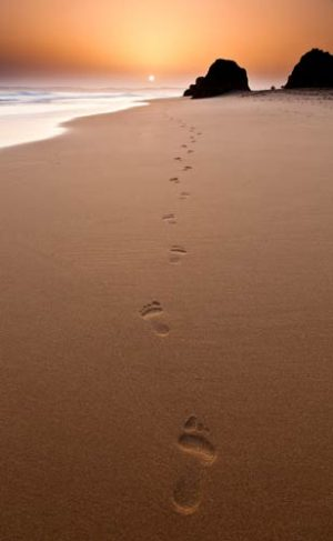 Seascapes Footsteps in the Sand