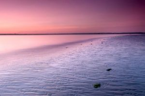 Seascapes Pink and Purple