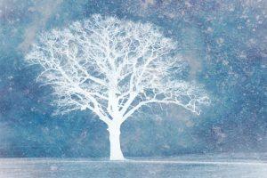 Modern Art Winter Tree