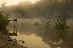 Landscapes Peaceful Morning River