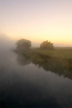 Landscapes Into The Mist